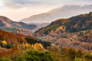Near Betws-y-Coed, North Wales